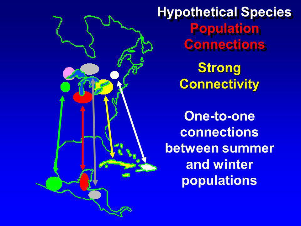 Strong Connectivity One-to-one connections between summer and winter populations Hypothetical Species Population Connections