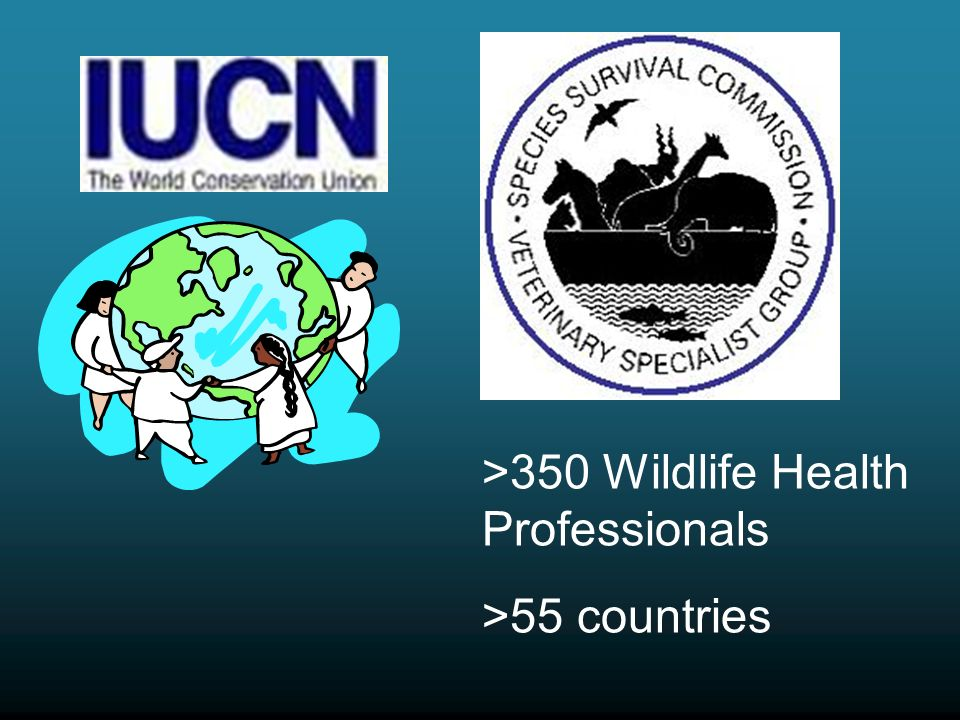 >350 Wildlife Health Professionals >55 countries