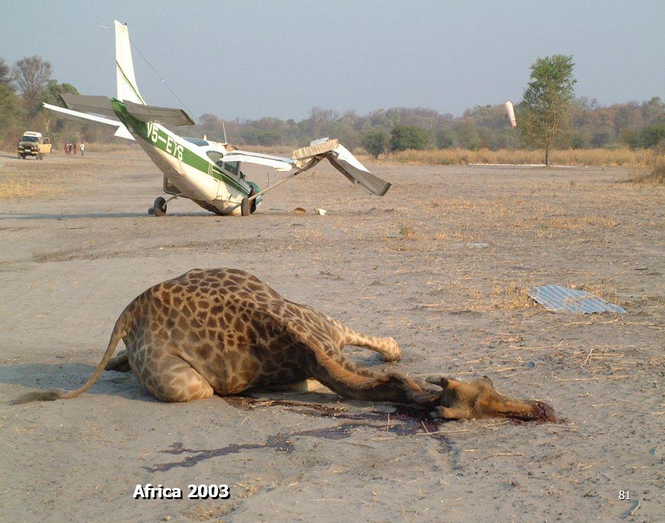 Africa 2003 81