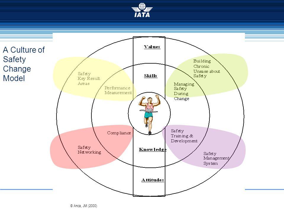 A Culture of Safety Change Model © Anca, JM (2000)