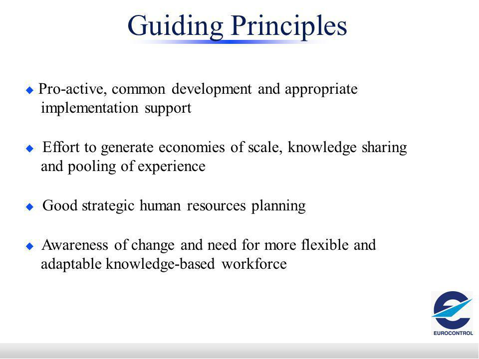 Pro-active, common development and appropriate implementation support Effort to generate economies of scale, knowledge sharing and pooling of experience Good strategic human resources planning Awareness of change and need for more flexible and adaptable knowledge-based workforce Guiding Principles