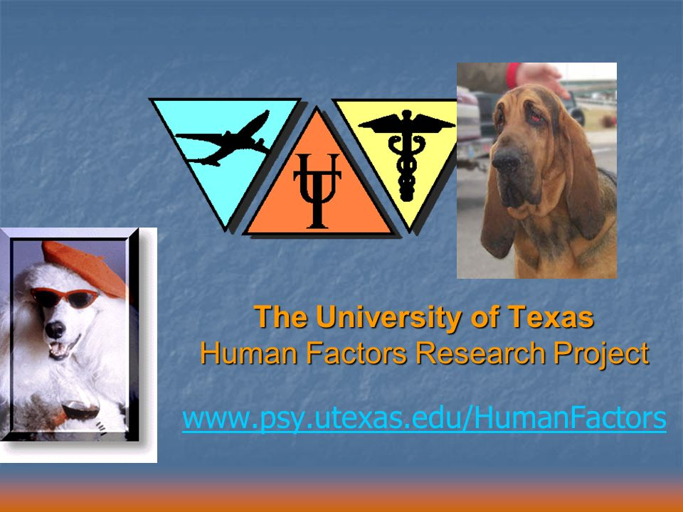 The University of Texas Human Factors Research Project www.psy.utexas.edu/HumanFactors