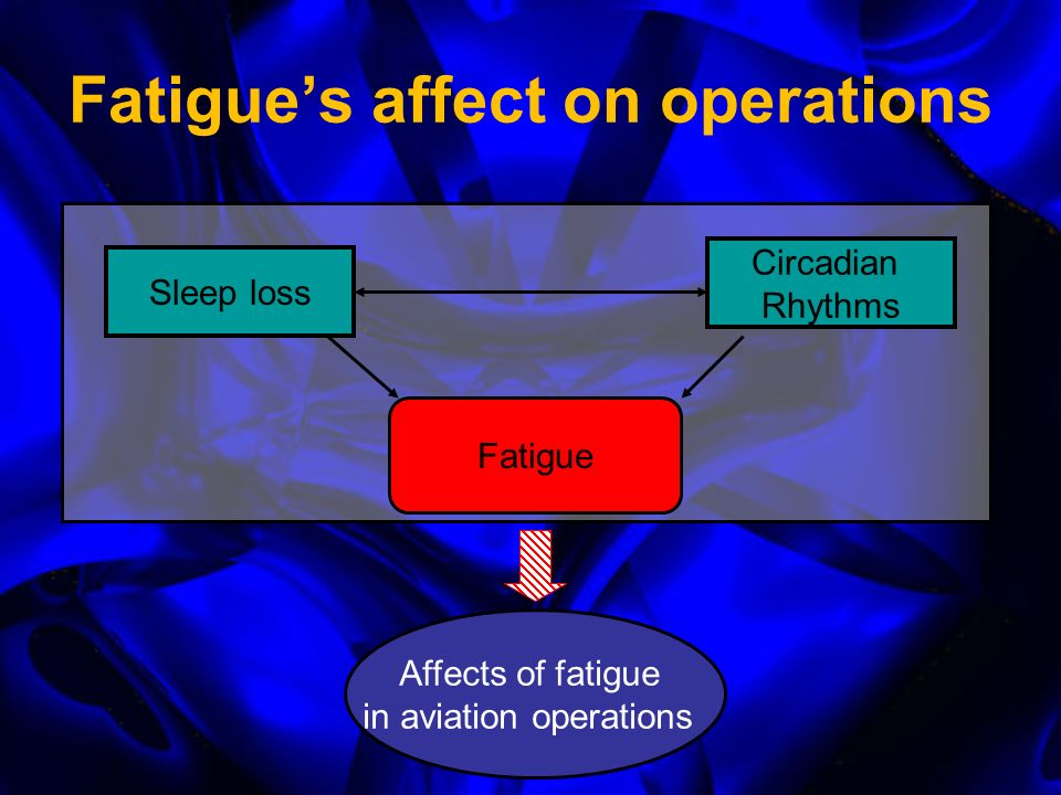 Primary Physiological Causes of Fatigue Sleep loss Circadian rhythm disruption