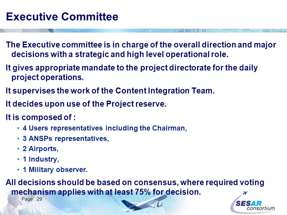 Page : 29 Executive Committee The Executive committee is in charge of the overall direction and major decisions with a strategic and high level operational role.