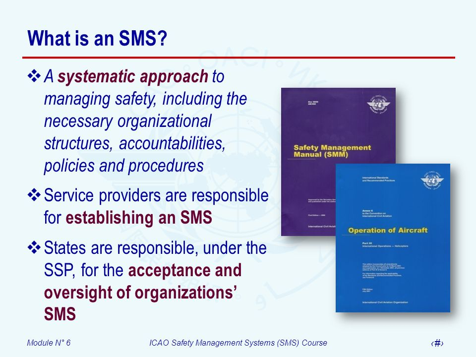 Module N° 6ICAO Safety Management Systems (SMS) Course 19 What is an SMS? A systematic approach to managing safety, including the necessary organizati