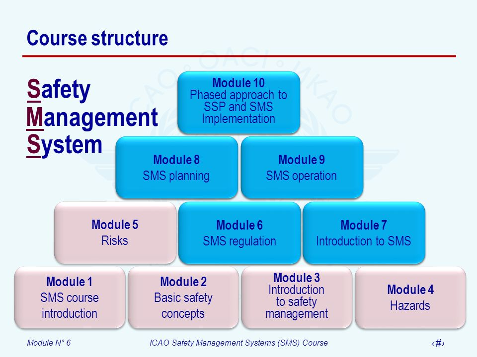 Module N° 6ICAO Safety Management Systems (SMS) Course 3 Objective At the end of this module participants will be able to describe the safety management requirements included in Annexes 1, 6, 8, 11, 13 and 14, including the relationship between a State safety programme (SSP) and an SMS