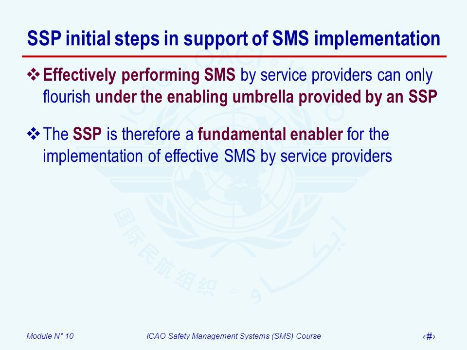 Module N° 10ICAO Safety Management Systems (SMS) Course 19 Effectively performing SMS by service providers can only flourish under the enabling umbrel