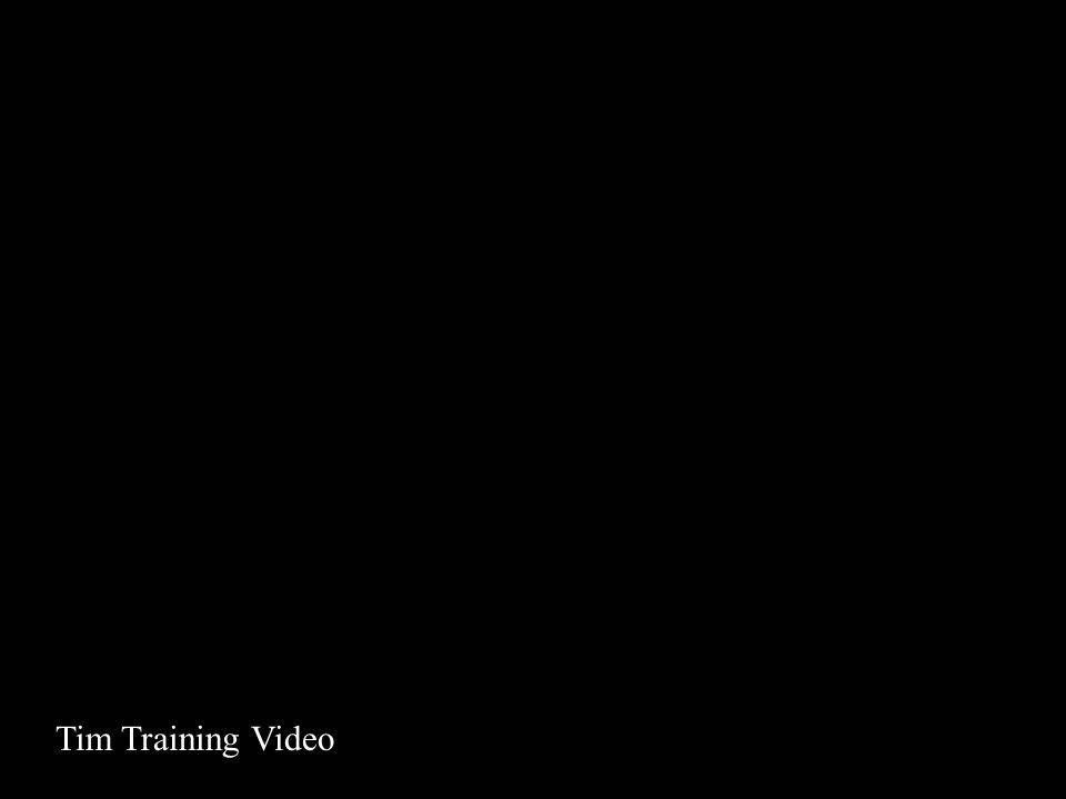 Video Tim 1 Tim Training Video