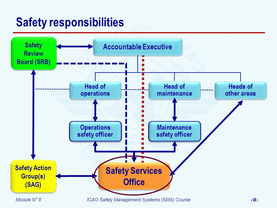 Module N° 8ICAO Safety Management Systems (SMS) Course 21 Safety responsibilities Heads of other areas Head of operations Head of maintenance Head of