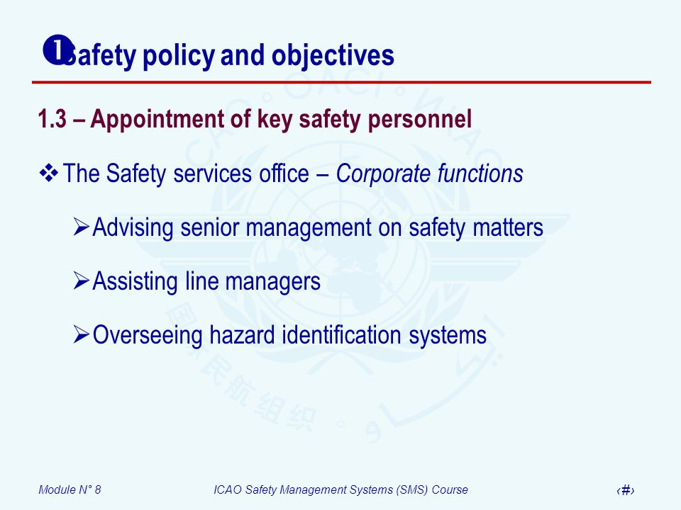 Module N° 8ICAO Safety Management Systems (SMS) Course 22 Safety policy and objectives 1.3 – Appointment of key safety personnel The Safety services o
