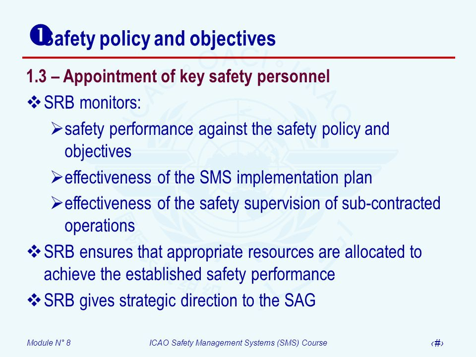 Module N° 8ICAO Safety Management Systems (SMS) Course 27 Safety policy and objectives 1.3 – Appointment of key safety personnel SRB monitors: safety