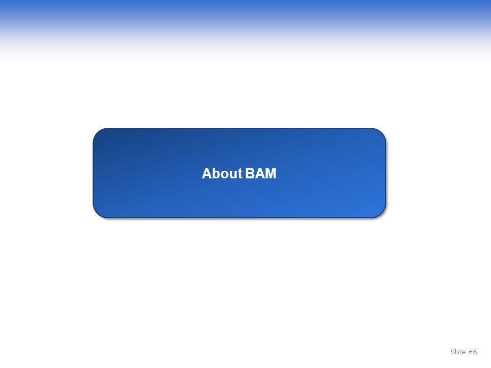 Slide #6 About BAM
