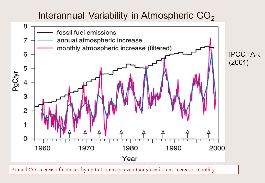 Interannual Variability in Atmospheric CO 2 Annual CO 2 increase fluctuates by up to 1 ppmv/yr even though emissions increase smoothly IPCC TAR (2001)
