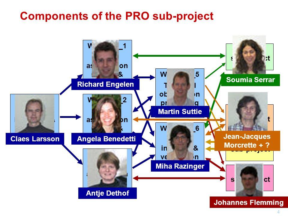 4 Components of the PRO sub-project WP_PRO_2 AER assimilation system & reanalysis WP_PRO_3 GRG assimilation system & reanalysis WP_PRO_1 GHG assimilat