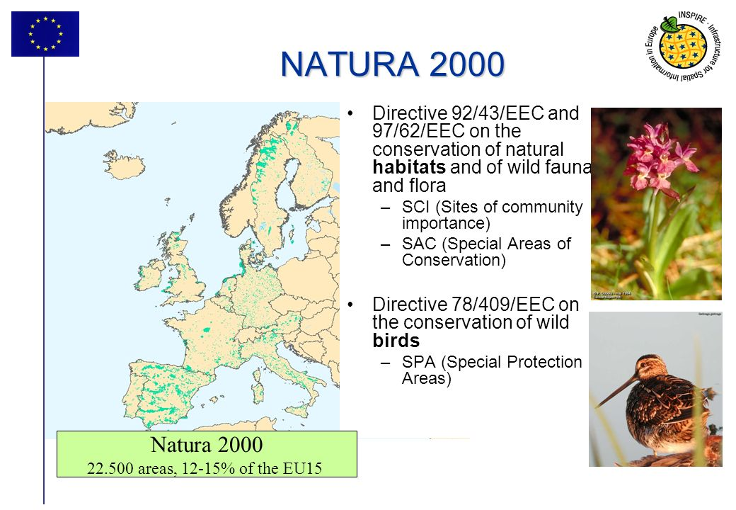 7 NATURA 2000 Directive 92/43/EEC and 97/62/EEC on the conservation of natural habitats and of wild fauna and flora –SCI (Sites of community importance) –SAC (Special Areas of Conservation) Directive 78/409/EEC on the conservation of wild birds –SPA (Special Protection Areas) Natura 2000 22.500 areas, 12-15% of the EU15