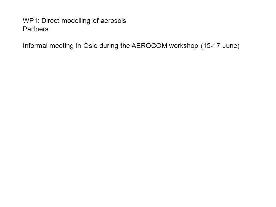 WP1: Direct modelling of aerosols Partners: Informal meeting in Oslo during the AEROCOM workshop (15-17 June)