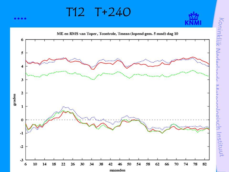 T12 T+240