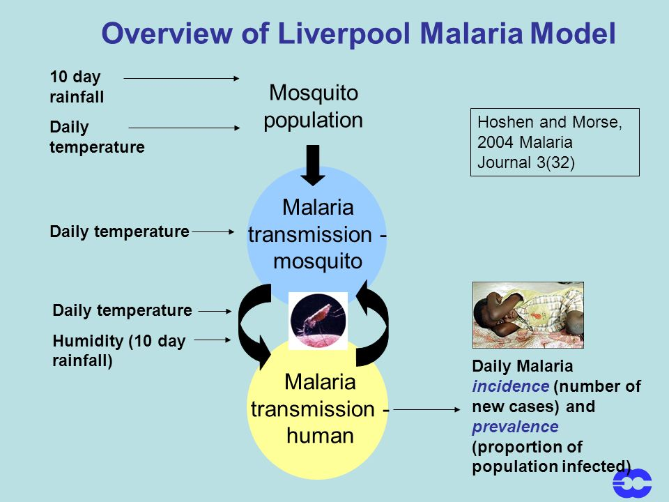 Overview of Liverpool Malaria Model Hoshen and Morse, 2004 Malaria Journal 3(32) 10 day rainfall Daily temperature Mosquito population Malaria transmission - mosquito Malaria transmission - human Daily temperature Humidity (10 day rainfall) Daily Malaria incidence (number of new cases) and prevalence (proportion of population infected) Daily temperature