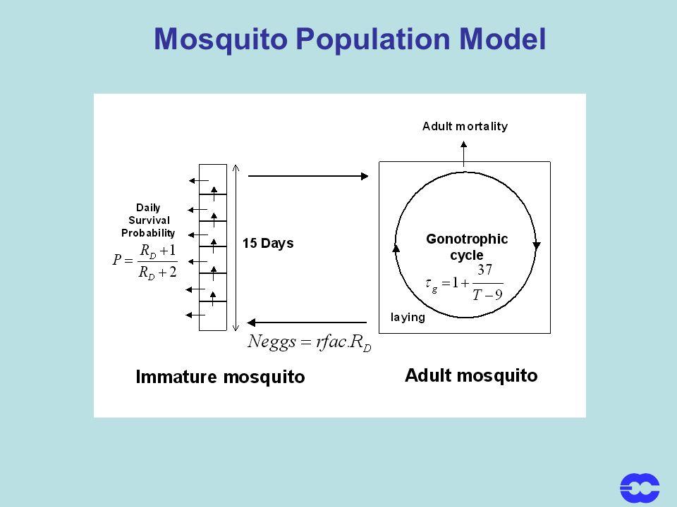 Mosquito Population Model