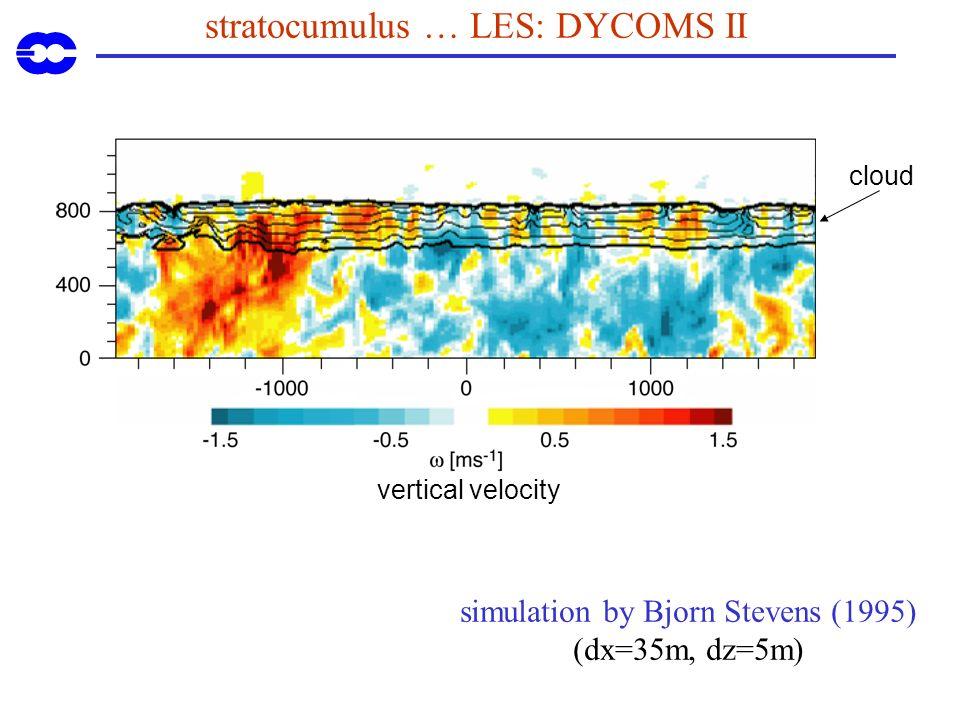 stratocumulus … LES: DYCOMS II simulation by Bjorn Stevens (1995) (dx=35m, dz=5m) vertical velocity cloud