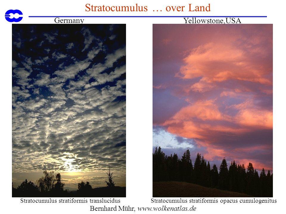 Stratocumulus … over Land Stratocumulus stratiformis opacus cumulogenitusStratocumulus stratiformis translucidus Bernhard Mühr, www.wolkenatlas.de Yellowstone,USA Germany