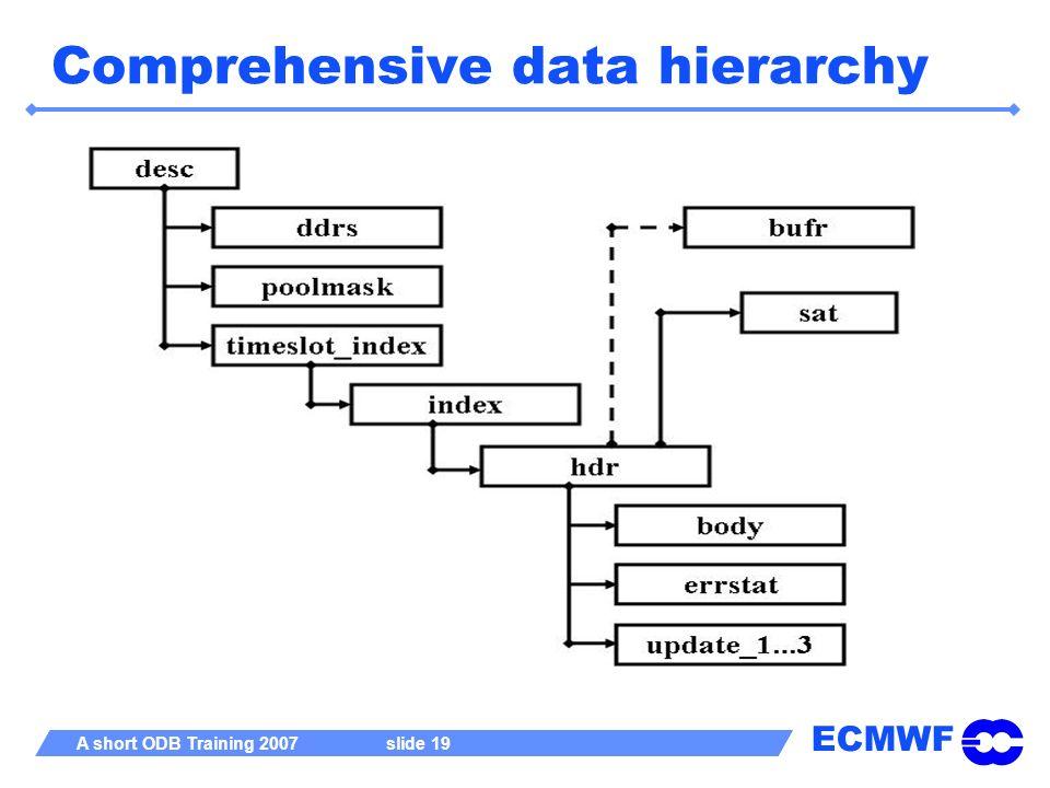 ECMWF A short ODB Training 2007 slide 19 Comprehensive data hierarchy