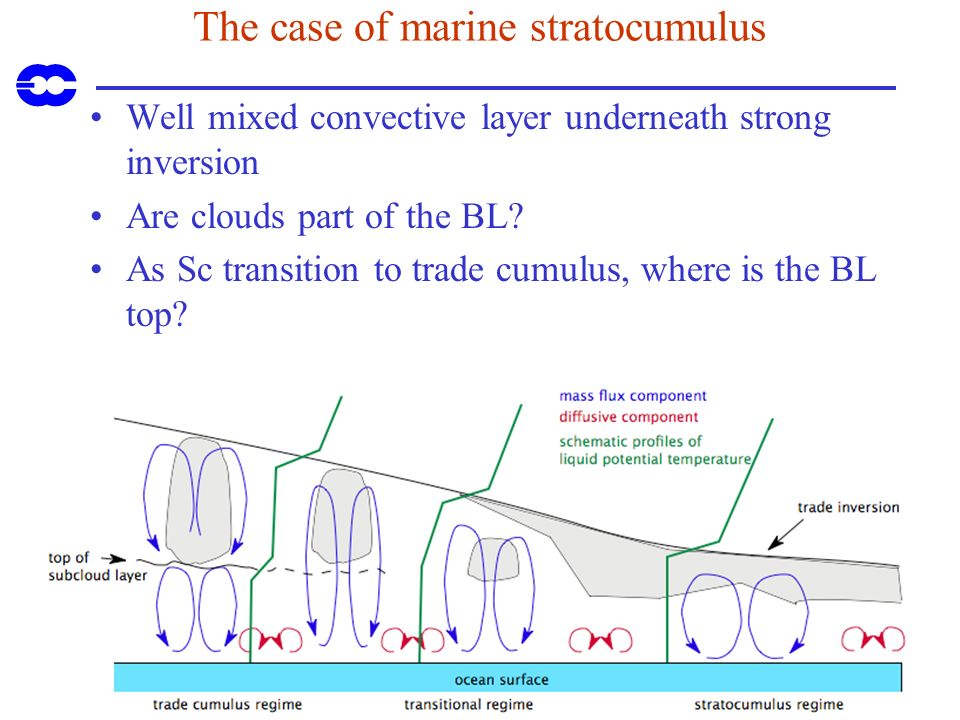 The case of marine stratocumulus Well mixed convective layer underneath strong inversion Are clouds part of the BL? As Sc transition to trade cumulus,
