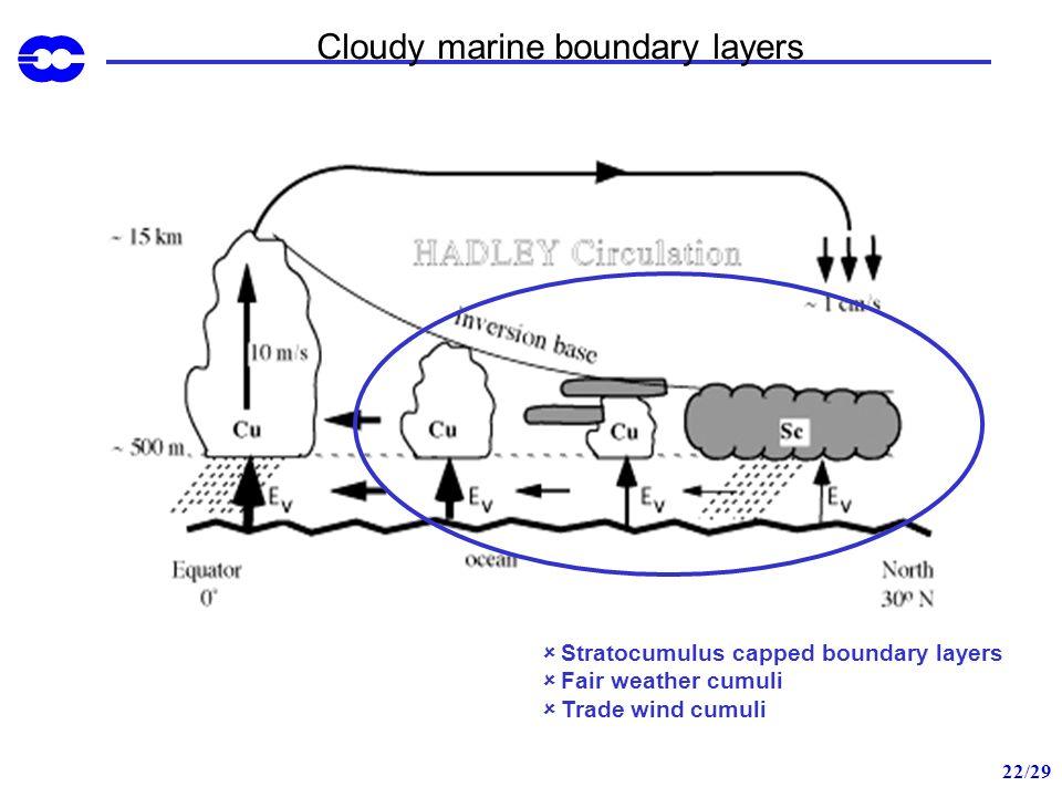 22/29 Cloudy marine boundary layers Stratocumulus capped boundary layers Fair weather cumuli Trade wind cumuli