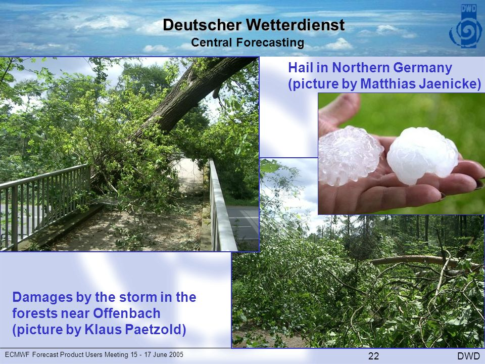Deutscher Wetterdienst Central Forecasting DWD ECMWF Forecast Product Users Meeting June Damages by the storm in the forests near Offenbach (picture by Klaus Paetzold) Hail in Northern Germany (picture by Matthias Jaenicke)
