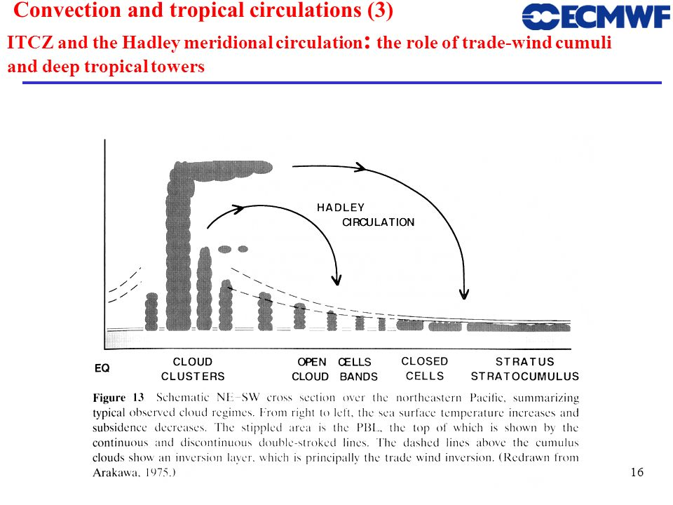 17 Convection and tropical circulations (4) The Walker zonal Circulation From Salby (1996)