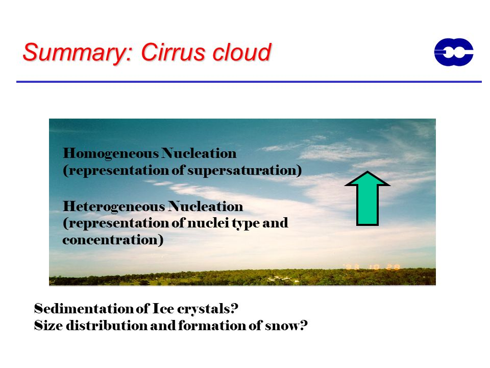 Summary: Cirrus cloud Homogeneous Nucleation (representation of supersaturation) Heterogeneous Nucleation (representation of nuclei type and concentra