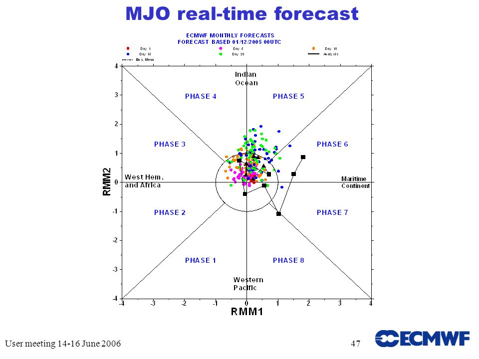 User meeting June MJO real-time forecast