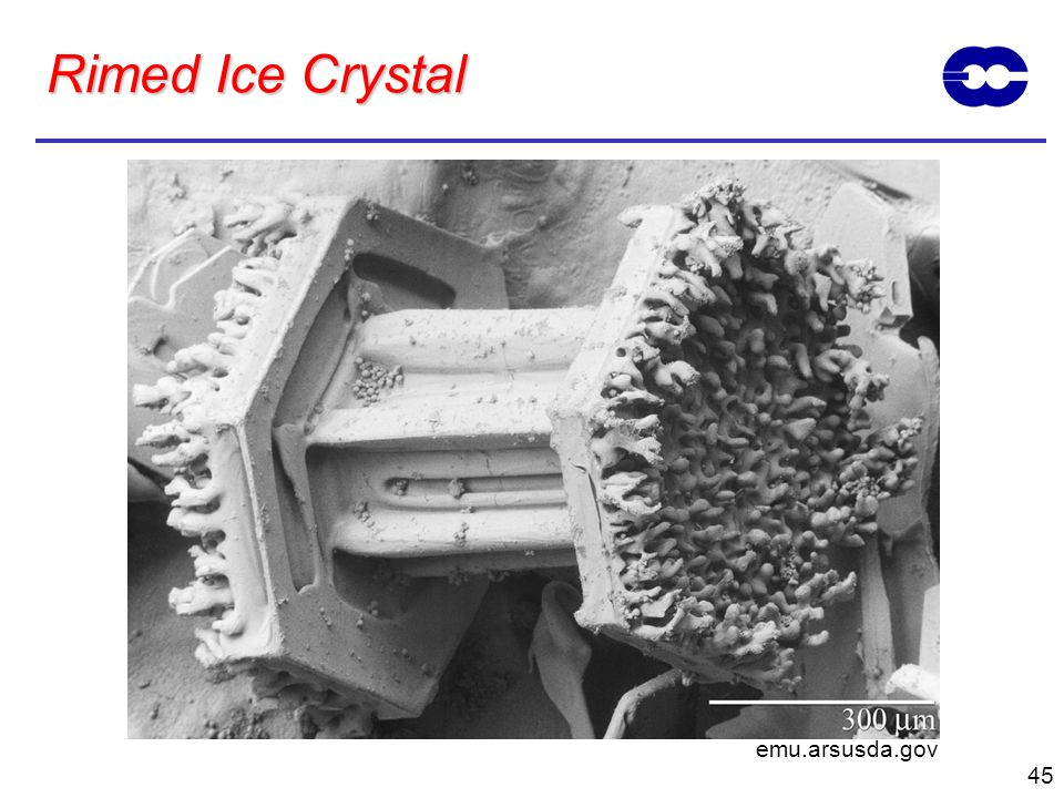45 Rimed Ice Crystal emu.arsusda.gov