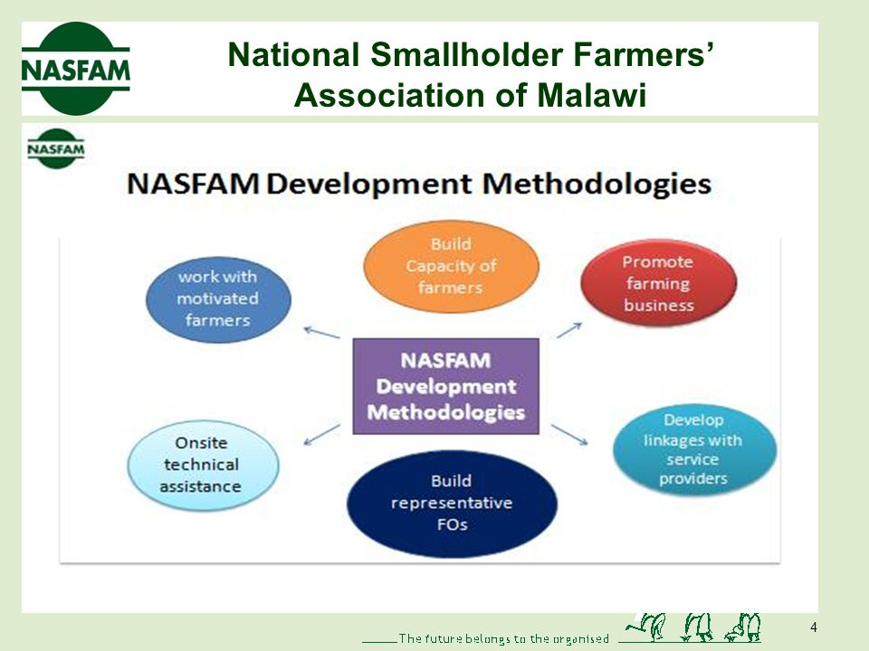 National Smallholder Farmers Association of Malawi 4