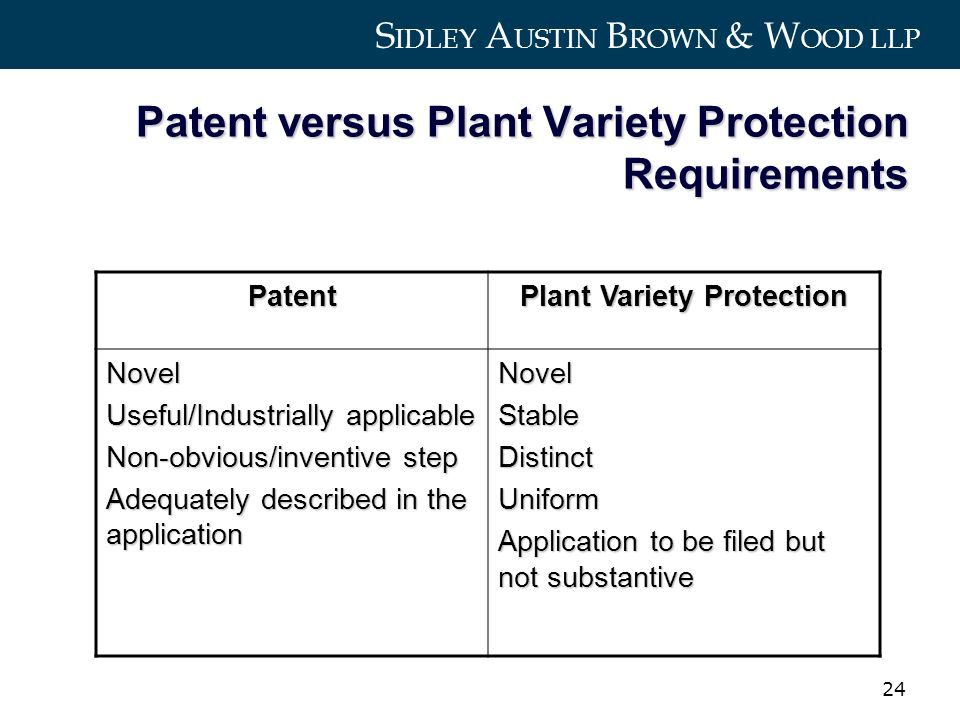 S IDLEY A USTIN B ROWN & W OOD LLP 24 Patent versus Plant Variety Protection Requirements Patent Plant Variety Protection Novel Useful/Industrially applicable Non-obvious/inventive step Adequately described in the application NovelStableDistinctUniform Application to be filed but not substantive