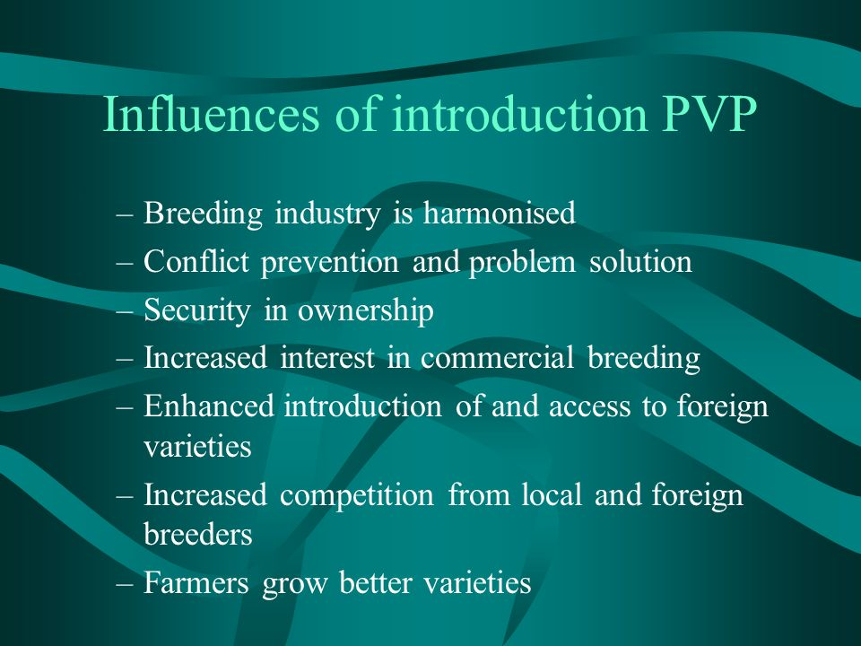 Influences of introduction PVP –Breeding industry is harmonised –Conflict prevention and problem solution –Security in ownership –Increased interest in commercial breeding –Enhanced introduction of and access to foreign varieties –Increased competition from local and foreign breeders –Farmers grow better varieties