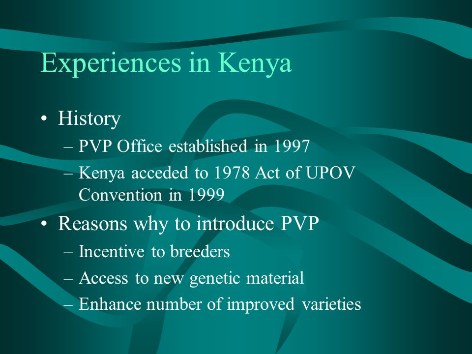 History –PVP Office established in 1997 –Kenya acceded to 1978 Act of UPOV Convention in 1999 Reasons why to introduce PVP –Incentive to breeders –Access to new genetic material –Enhance number of improved varieties