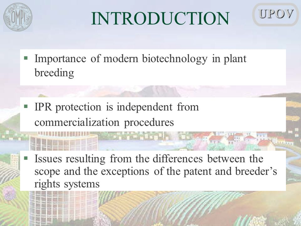 INTRODUCTION §Importance of modern biotechnology in plant breeding §IPR protection is independent from commercialization procedures §Issues resulting from the differences between the scope and the exceptions of the patent and breeders rights systemsUPOV
