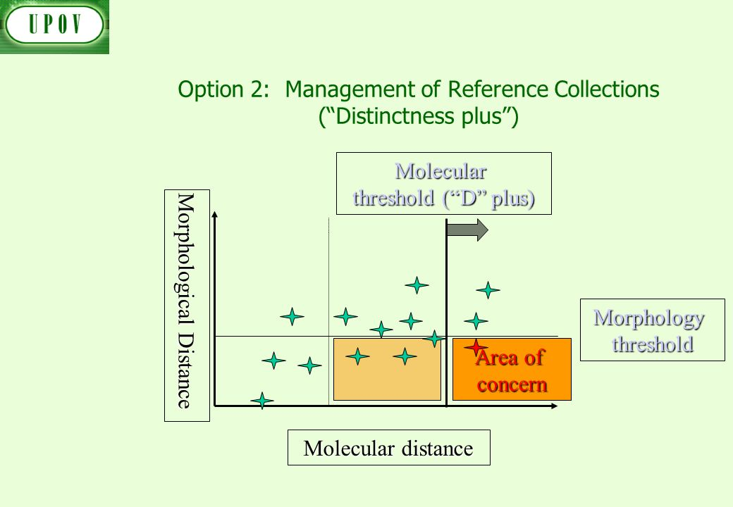 Option 2: Management of Reference Collections (Distinctness plus) Morphological Distance Molecular distance Molecular threshold (D plus) Area of conce