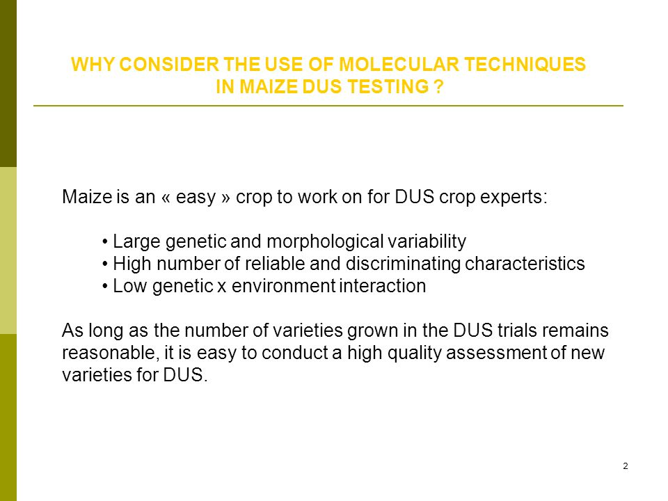 2 WHY CONSIDER THE USE OF MOLECULAR TECHNIQUES IN MAIZE DUS TESTING ? Maize is an « easy » crop to work on for DUS crop experts: Large genetic and mor