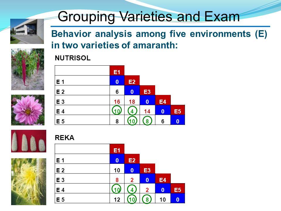 Grouping Varieties and Exam E1 0E2 60E3 16180E4 104140E5 810860 E1 0E2 100E3 820E4 10420E5 12108 0 Behavior analysis among five environments (E) in tw