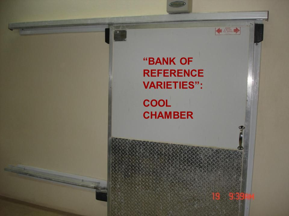 BANK OF REFERENCE VARIETIES: COOL CHAMBER
