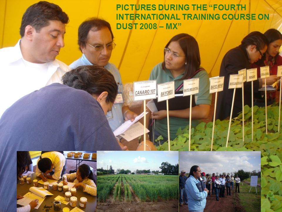 PICTURES DURING THE FOURTH INTERNATIONAL TRAINING COURSE ON DUST 2008 – MX