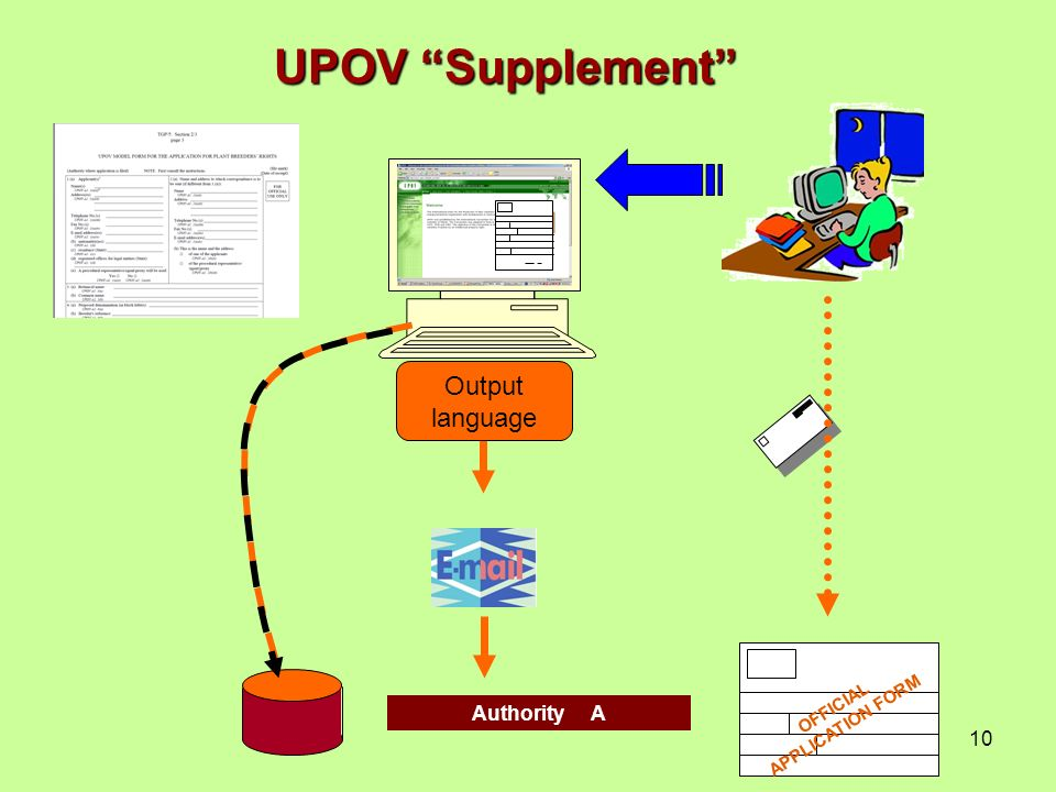 10 Authority A Output language UPOV Supplement OFFICIAL APPLICATION FORM