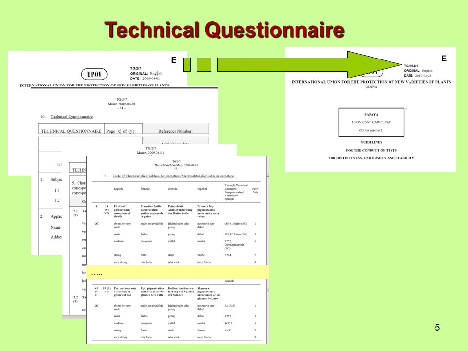 5 Technical Questionnaire …..