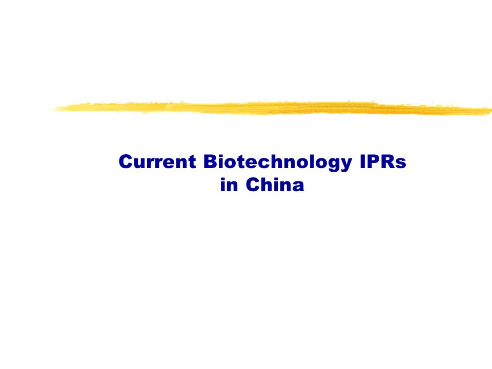 Current Biotechnology IPRs in China