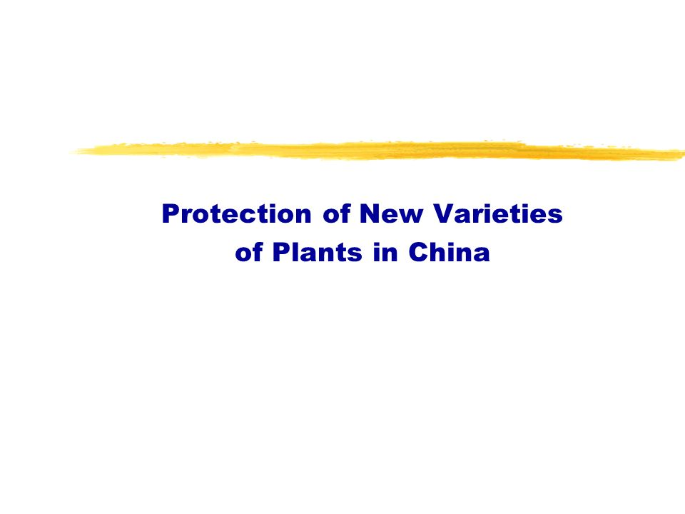 Protection of New Varieties of Plants in China