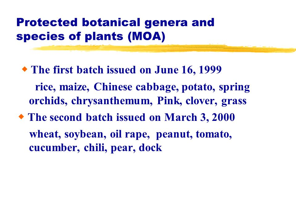 Protected botanical genera and species of plants (MOA) The first batch issued on June 16, 1999 rice, maize, Chinese cabbage, potato, spring orchids, c