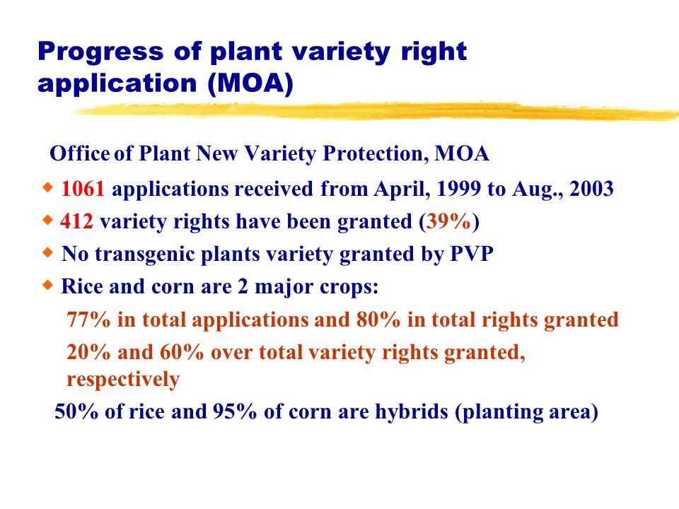 Progress of plant variety right application (MOA) Office of Plant New Variety Protection, MOA 1061 applications received from April, 1999 to Aug., 2003 412 variety rights have been granted (39%) No transgenic plants variety granted by PVP Rice and corn are 2 major crops: 77% in total applications and 80% in total rights granted 20% and 60% over total variety rights granted, respectively 50% of rice and 95% of corn are hybrids (planting area)