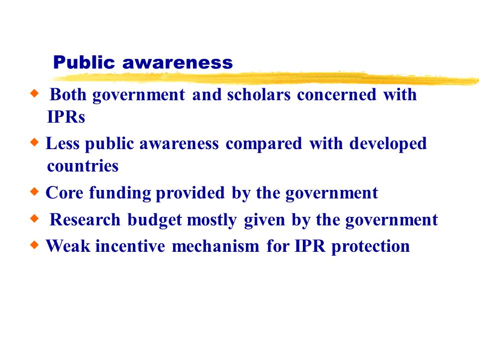 Public awareness Both government and scholars concerned with IPRs Less public awareness compared with developed countries Core funding provided by the